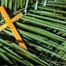 """Reflexão Domingo de Ramos e da Paixão do Senhor: """"Quem é este Rei desarmado que abala a terra?"""" (Mt 21,1-11; 27,11-54)"""