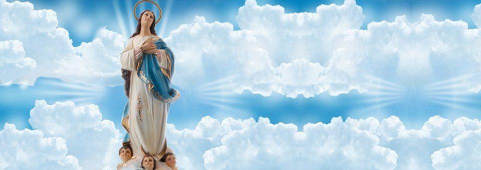 Oito paróquias dedicadas a Nossa Senhora da Conceição estão em festa na Arquidiocese